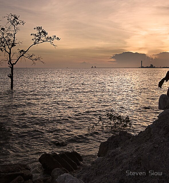 Homesick by Steven  Siow