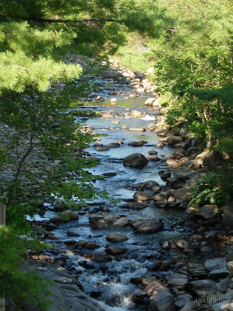 Ashuelot River, New Hampshire by Jan Morris