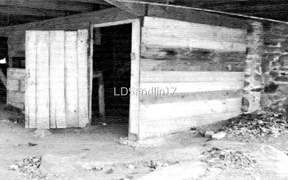 The basement Door by LDSandlin17