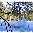 Frozen Fence-cicles by NancyC