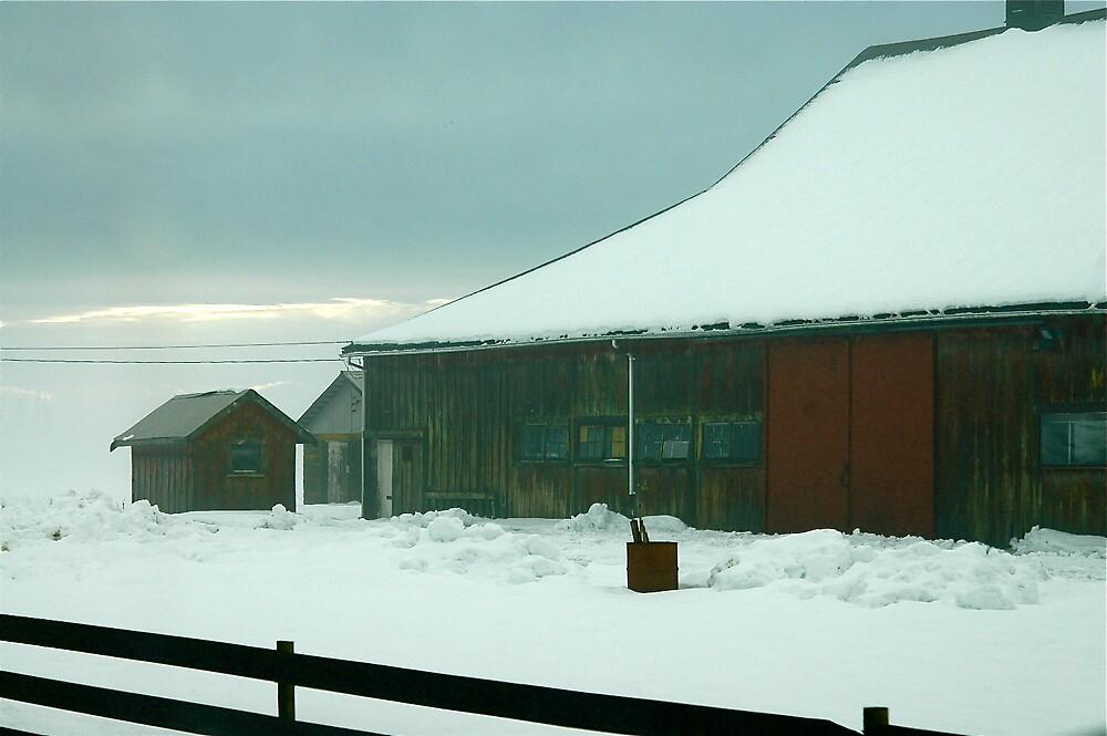 Winter Barn 2 by clare scott