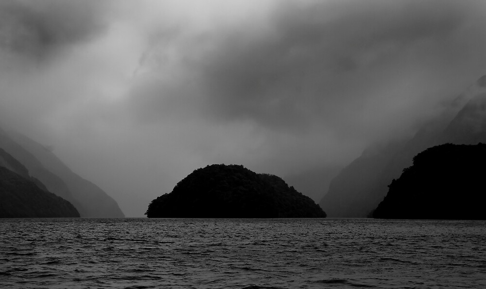 In Doubtful Sound by Ian Robertson