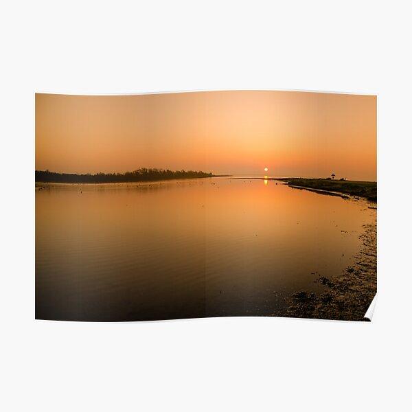 Estuary  Poster