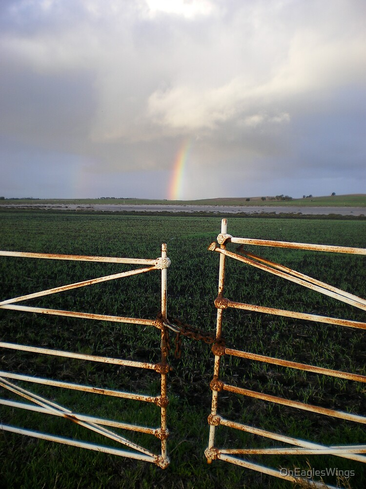 Rainbow and the fence by OnEaglesWings