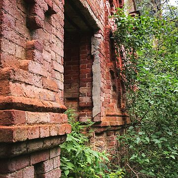 Bas-relief masonry made of red brick. by GermanS