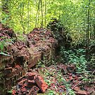 Remains of old brickwork in the forest. by GermanS