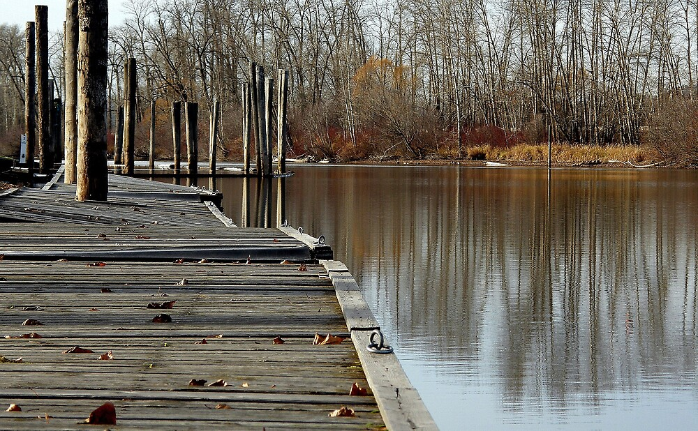 Autumn reflection by Cricket Jones