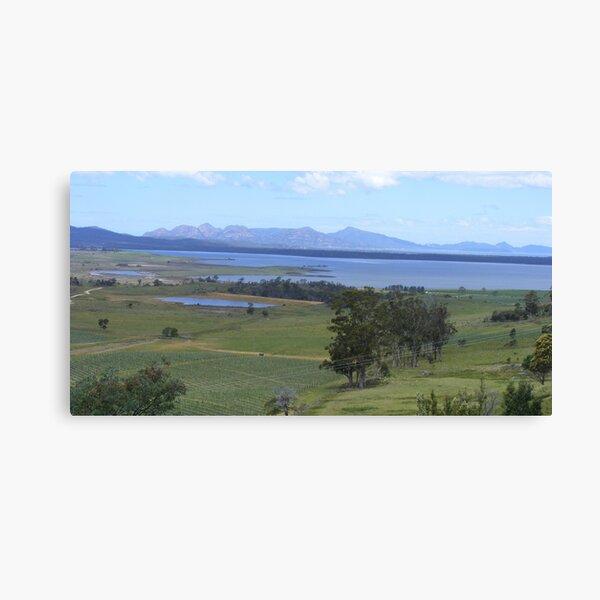 wineries near Freycinet Peninsula, Tasmania Canvas Print