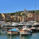 Italian Riviera  by Lanis Rossi