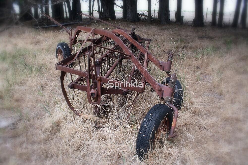 Rust In Peace by Sprinkla