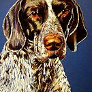 German Shorthair Retriever by Susan McKenzie Bergstrom