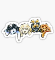 Sleepy Cockapoos Sticker