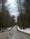 Spring Thaw in December...a Counrty Road... by Larry Llewellyn