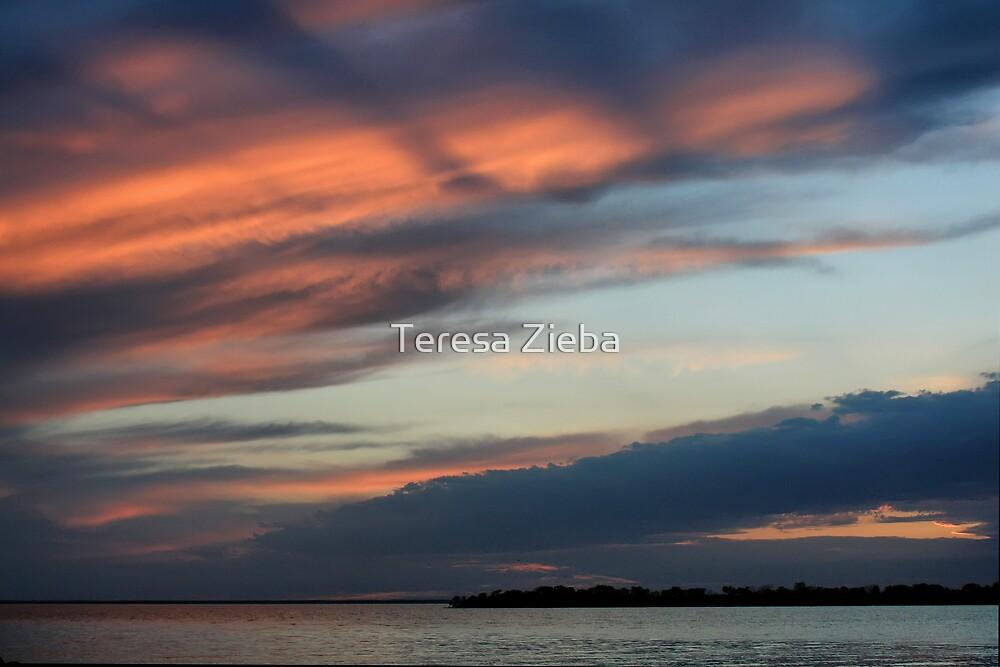 Painted Sky by Teresa Zieba