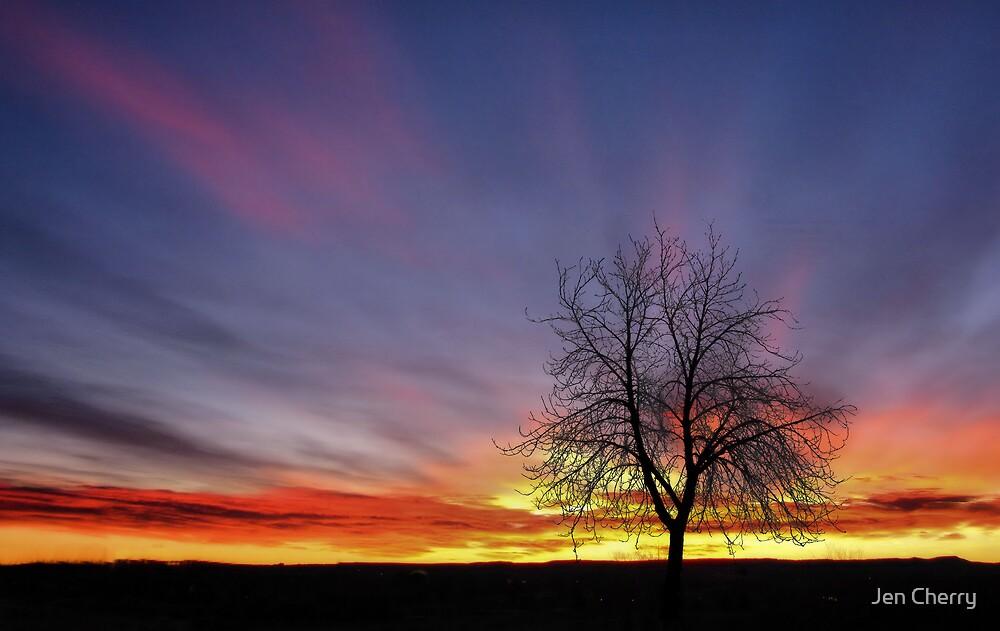 Blessed Mornings by Jen Millard