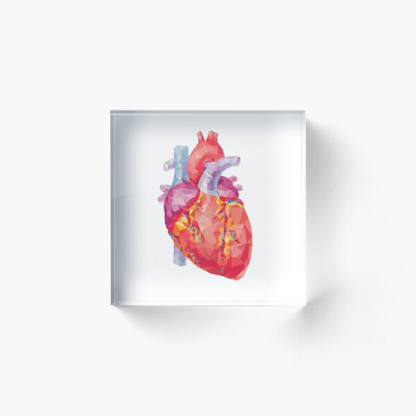 polygonal human heart illustration Acrylic Block