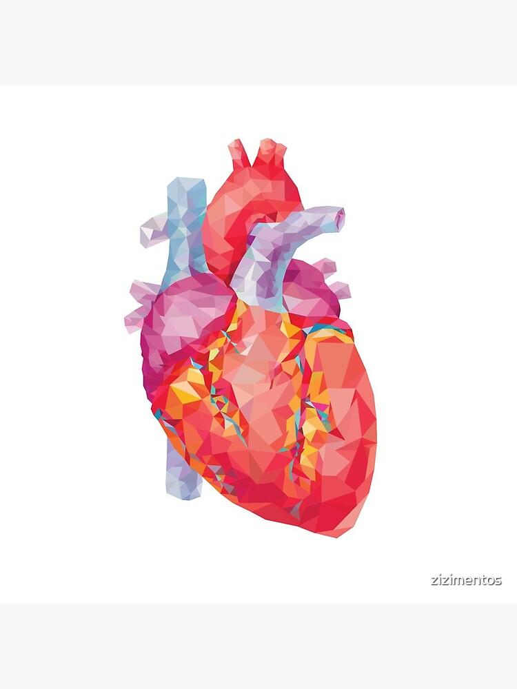 polygonal human heart illustration by zizimentos