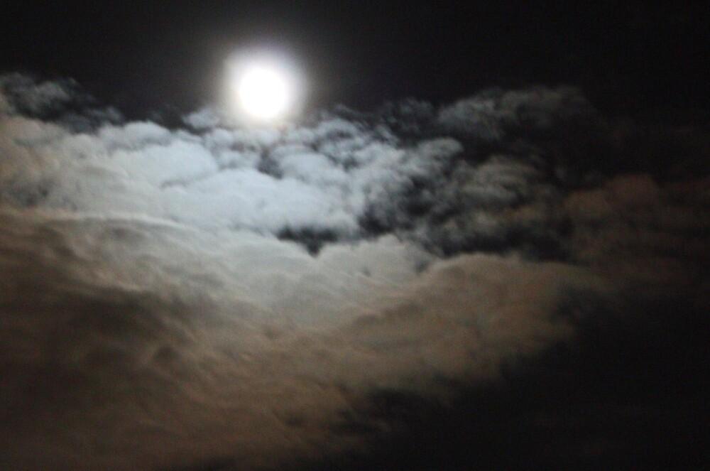 Moonlight by sjmphotos