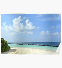Beautiful island in the Maldives with vegetation, light sand and clear blue water Poster