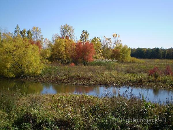 Fall Colors in the Black Swamp by Lightningjack49
