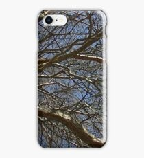 Windy Day - The Blue & The Green 016 iPhone Case/Skin