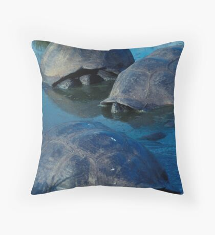 Galapagos Tortoises in Pond Throw Pillow