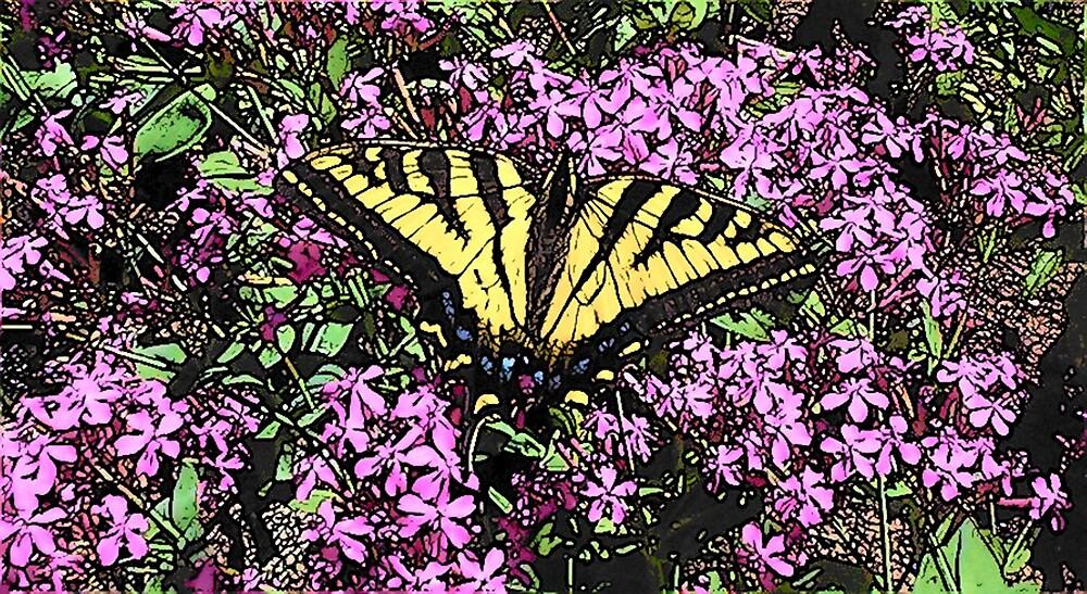Butterfly of Transformation by Kamalanirose