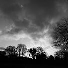 black and white sunrise by funkybunch