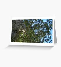 Windy Day - The Blue & The Green 027 Greeting Card