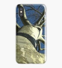 Windy Day - The Blue & The Green 032 iPhone Case/Skin