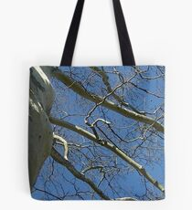 Windy Day - The Blue & The Green 033 Tote Bag