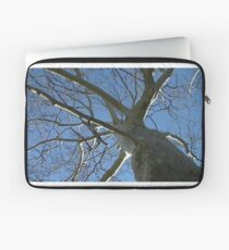 Windy Day - The Blue & The Green 035 Laptop Sleeve