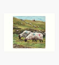 Sheep on Achill Art Print