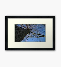Windy Day - The Blue & The Green 038 Framed Print
