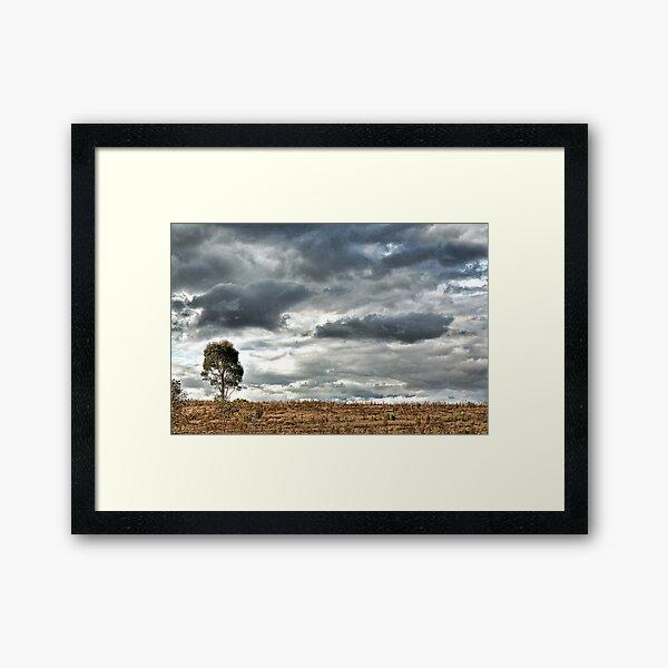 OneTree Hill Framed Art Print