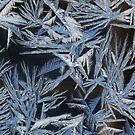 «Jack Frost al acecho» de artwhiz47