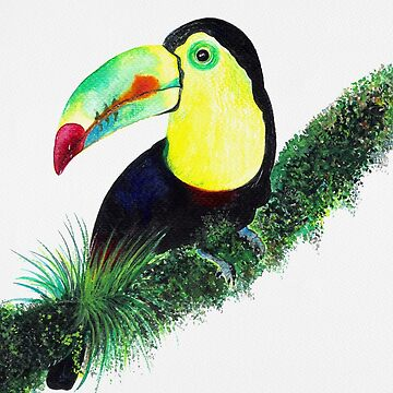 Toucan, Tropical Leaves Pattern by Neginmf