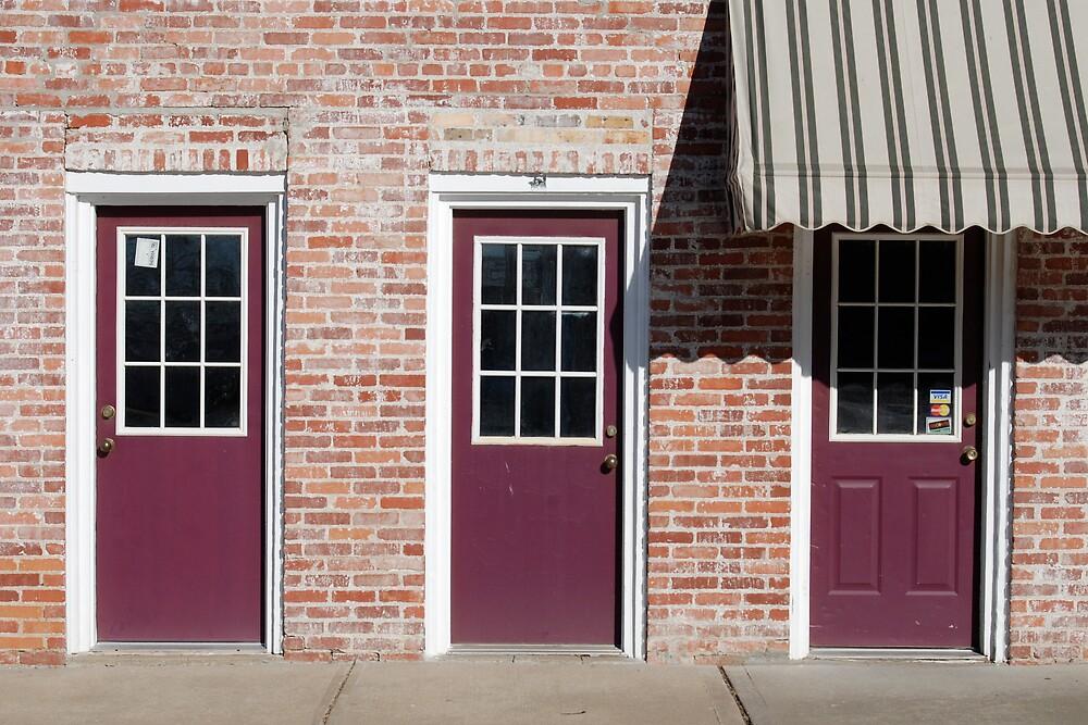 Purple Doors by Robert Baker