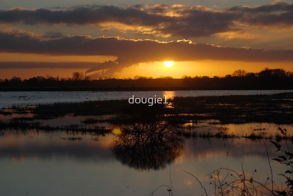 Wheldrake Ings 8 by dougie1