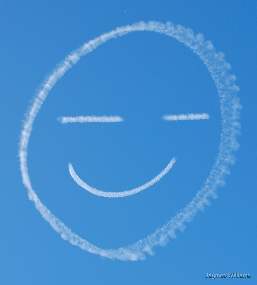 The Happy Skywriter by Jaymes Williams