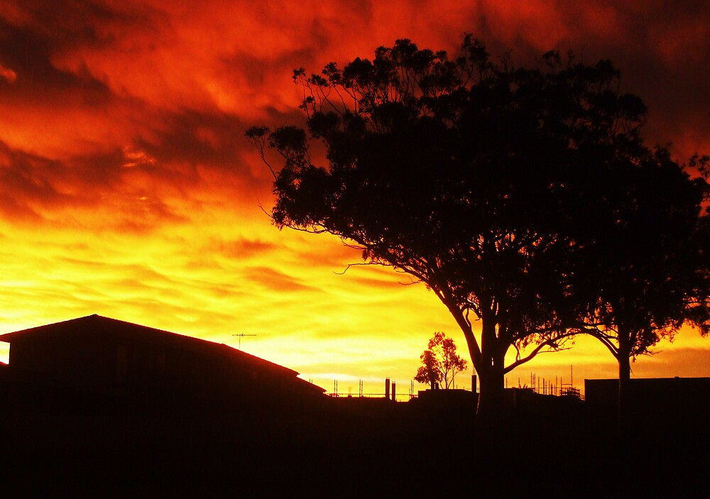 Treeside Sunset by Gracie Townsend