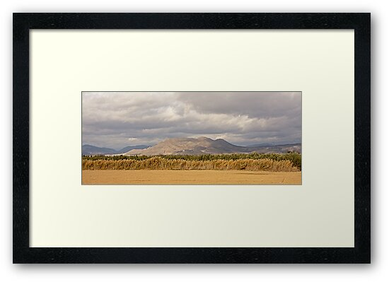 Panoramic landscape in the Andalucian countryside, Spain by xophotography