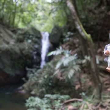 Pengweng diving into a waterfall in Belize by Pengweng