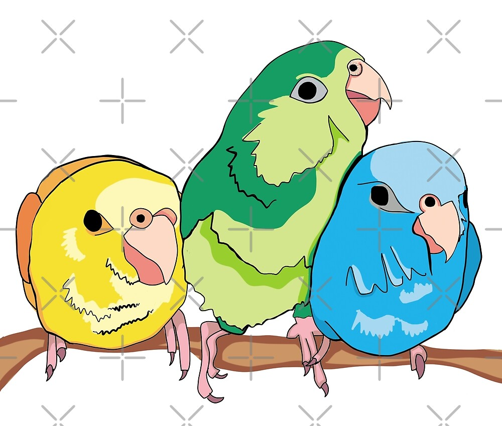 Snuggly Parrotlets by VivianRosalee