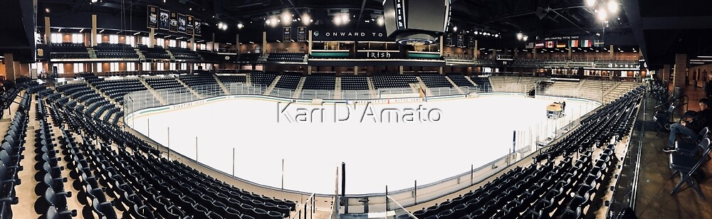 Compton Family Ice Arena, Notre Dame by Kari D'Amato