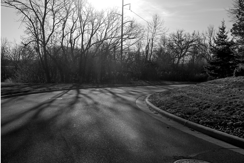 B&W Nature 1 by Jessica Brown