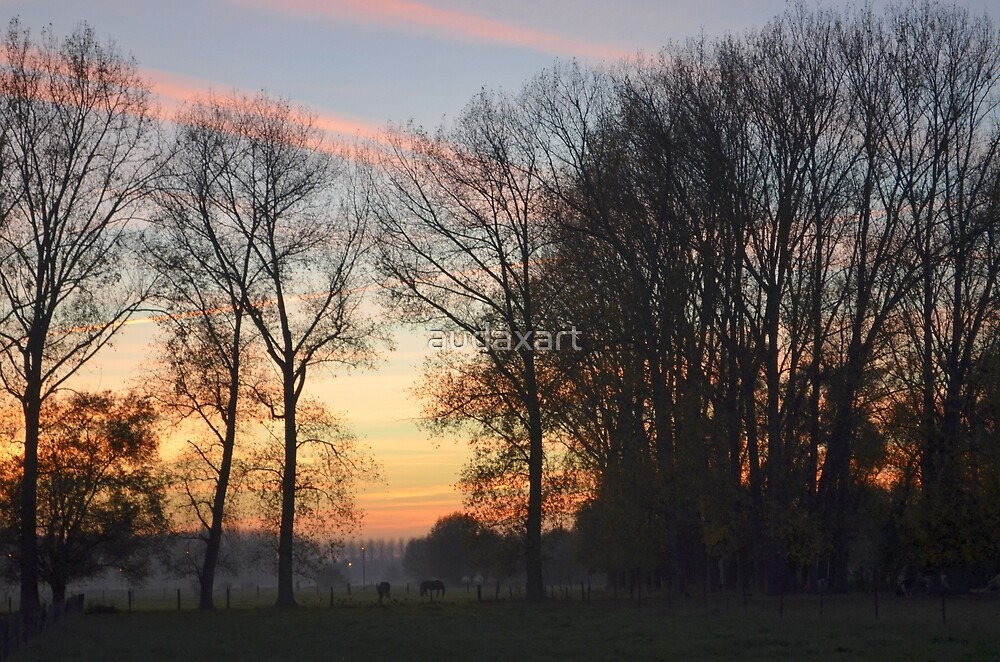 Sunset Landscape With Trees by audaxart