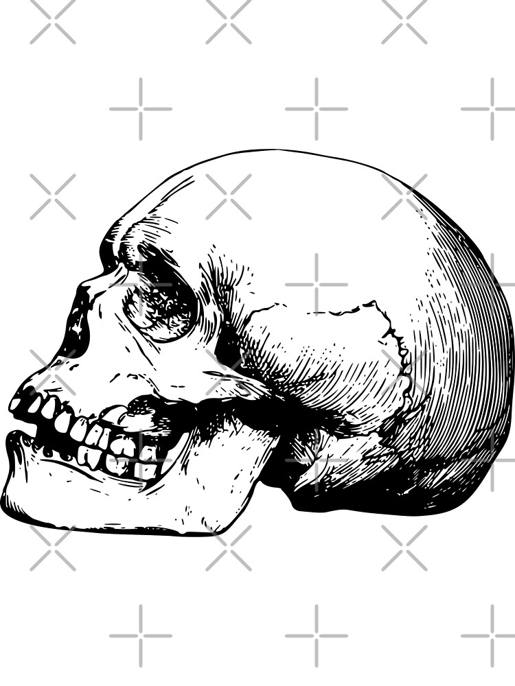 Back To Skull - 037 by Magic  Makers
