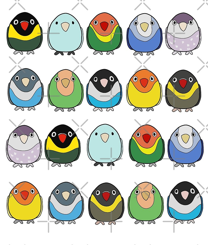 Flock of Lovebirds by VivianRosalee