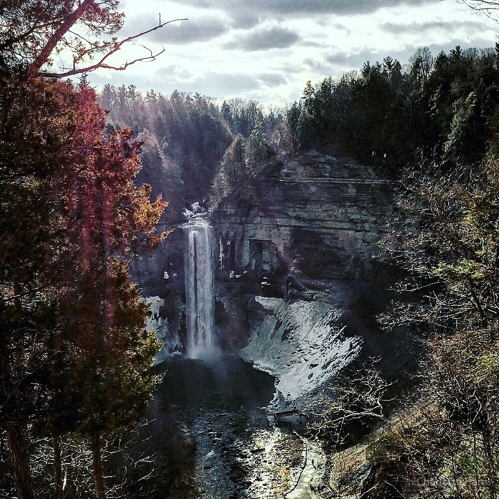 Taughannock Falls by Charlotte Fare